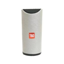 Parlante T&g Portable Mod. 113 Gris
